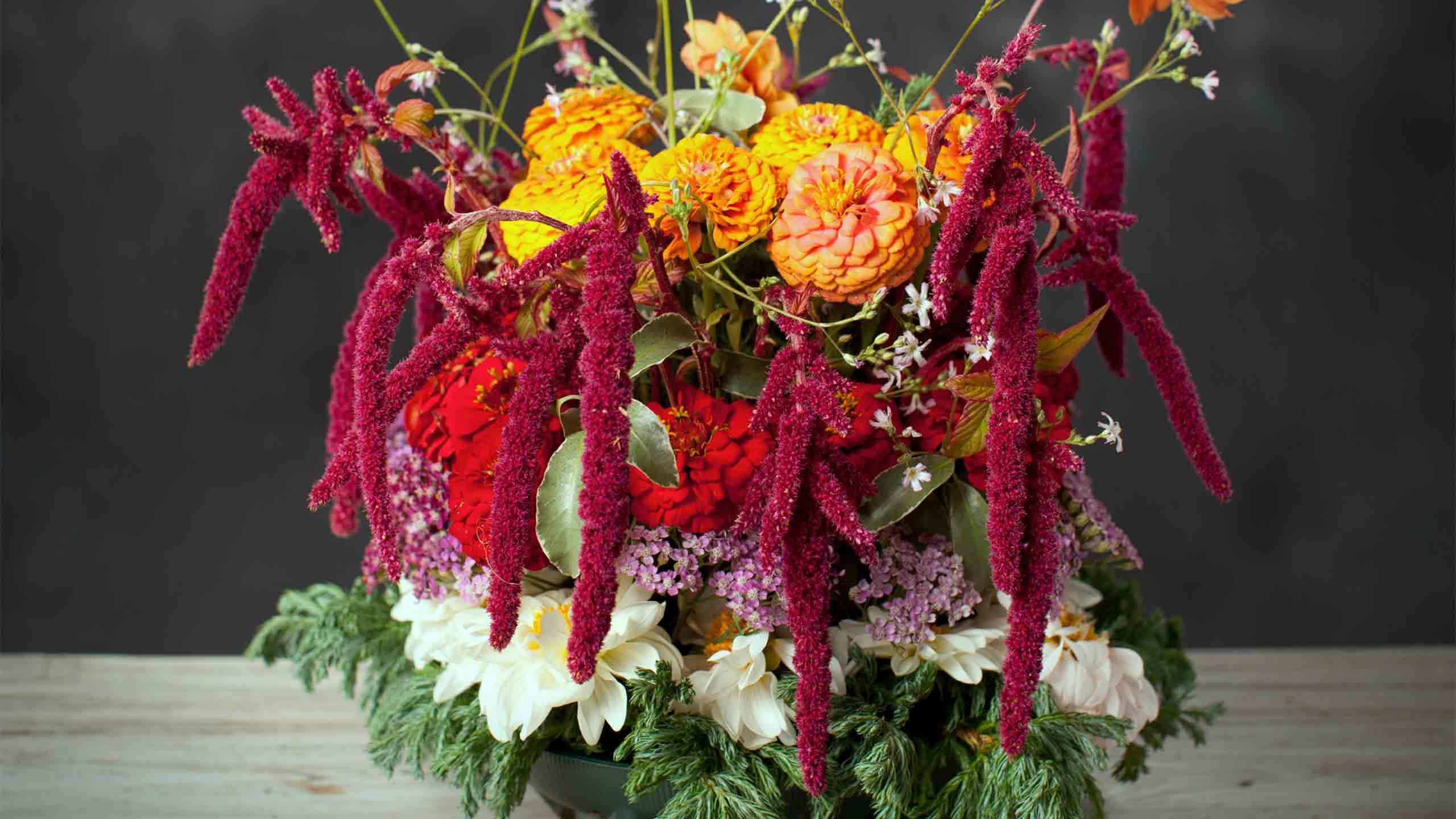 Tara Hill Flowers
